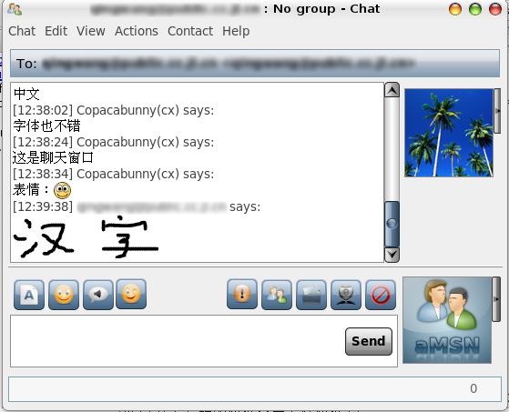 File:Amsn chat.png