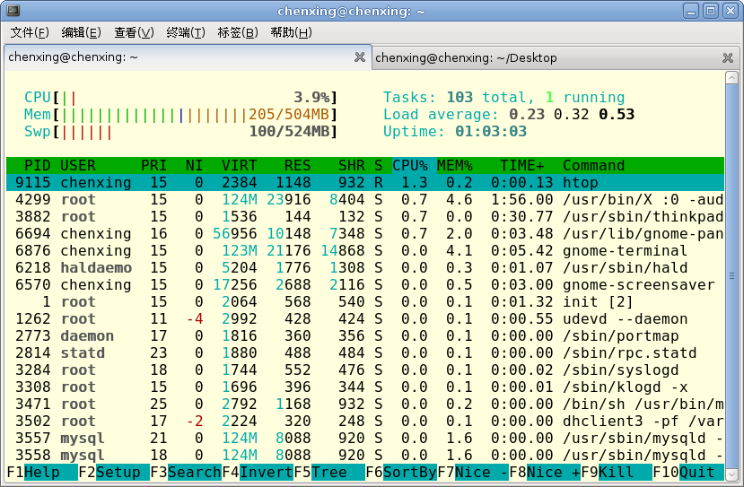 File:Htop ss.png